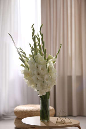 Vase with beautiful white gladiolus flowers on wooden table in room, space for text Stockfoto