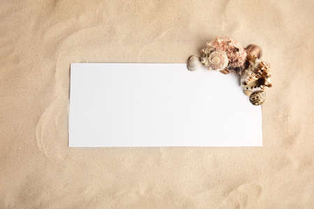 Flat lay composition with sea shells and blank card on sand, space for text