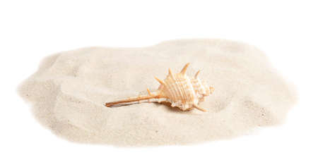 Pile of beach sand with sea shell on white background Фото со стока