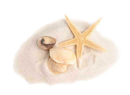 Pile of beach sand with beautiful starfish and sea shells on white background, above view