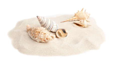 Pile of beach sand with sea shells on white background Фото со стока