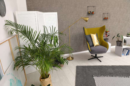 Room interior with armchair and indoor plants. Trendy home decor Stockfoto