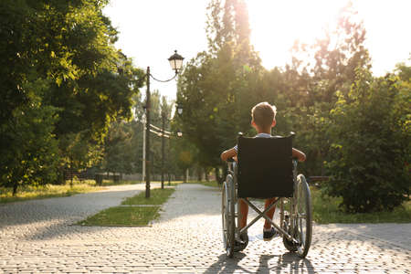 Little boy in wheelchair at park on sunny day. Space for text
