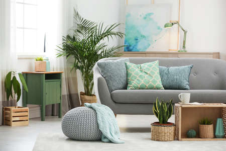 Living room interior with green houseplants and sofa 写真素材 - 128831247
