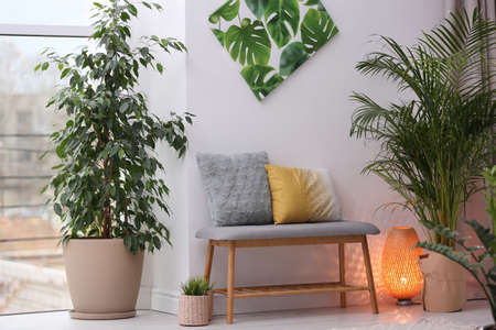 Stylish modern room interior with exotic houseplants 写真素材 - 128831249