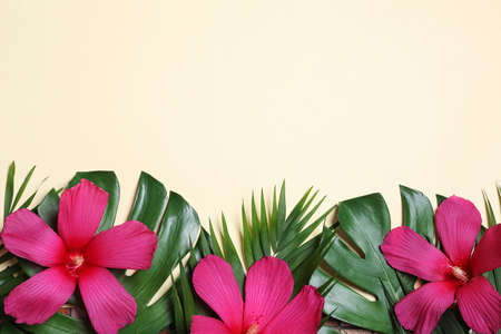Flat lay composition with tropical leaves and Hibiscus flowers on beige background. Space for text
