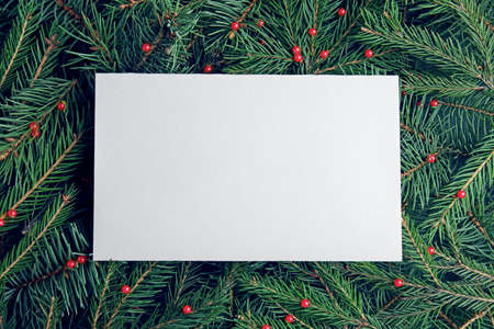 Blank card on Christmas tree branches as background, top view. Space for text