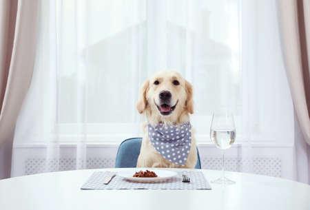 Lindo perro gracioso sentado en la mesa de comedor servida en el interior Foto de archivo