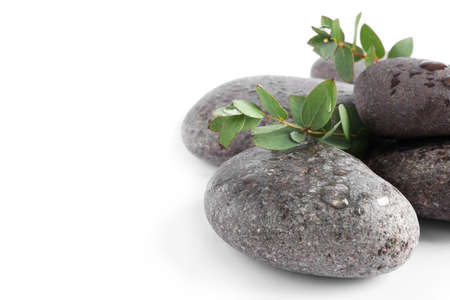 Spa stones and green leaves with water drops on white background 스톡 콘텐츠