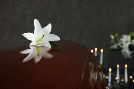 Wooden casket with white lily in funeral home, closeup. Space for text Banque d'images