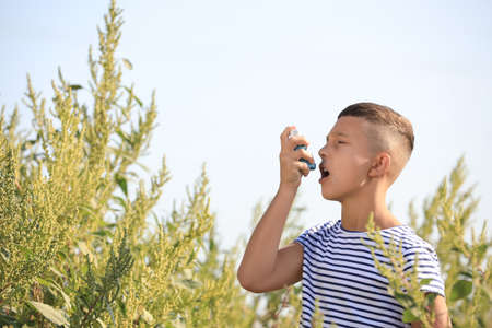 Little boy with inhaler suffering from ragweed allergy outdoors