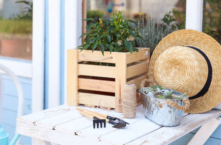 Gardening tools, plants and straw hat on white wooden table outdoors