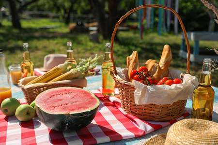 Different products for summer picnic served on checkered blanket outdoors Stockfoto