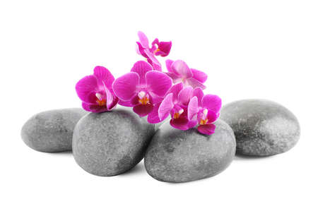 Orchid with spa stones on white background