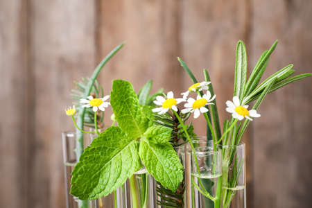 Test tubes of different essential oils with plants against blurred background, closeup