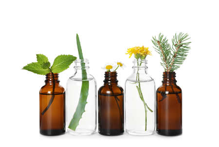 Glass bottles of different essential oils with plants on white background