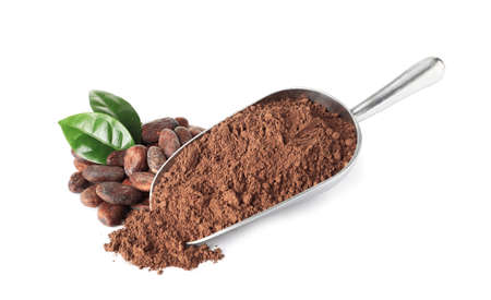 Composition with cocoa beans and powder on white background