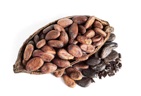 Cut pod and cocoa beans isolated on white, top view 写真素材 - 129532306