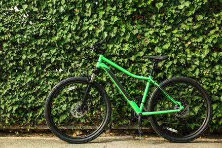 Modern bicycle near green hedge outdoors. Healthy lifestyle