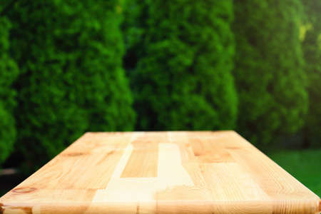 Empty wooden picnic table in park, closeup. Space for design