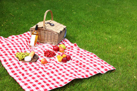 Picnic basket with products and bottle of wine on checkered blanket in garden 스톡 콘텐츠