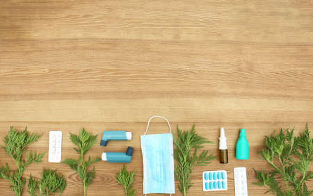 Flat lay composition with ragweed plant (Ambrosia genus) on wooden background, space for text. Seasonal allergy