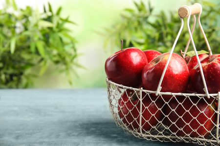 Metal basket with ripe juicy red apples on blue wooden table against blurred background. Space for text