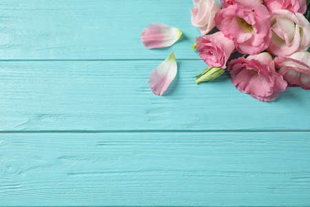 Flat lay composition with beautiful Eustoma flowers on light blue wooden table, space for text