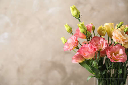 Eustoma flowers against beige background, space for text
