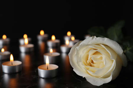 Biała Róża i niewyraźne płonące świece na stole w ciemności, zbliżenie z miejscem na tekst. Symbol pogrzebowy