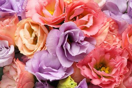 Beautiful fresh Eustoma flowers as background, closeup view
