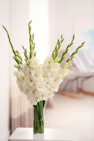 Vase with beautiful white gladiolus flowers on wooden table in room, space for text 版權商用圖片