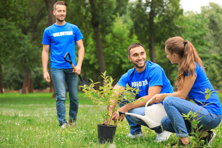 Young volunteers planting tree in green park. Charity work
