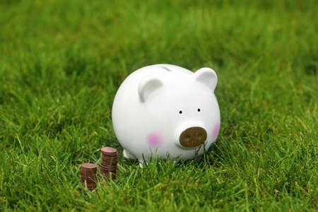 Cute piggy bank and coins on green grass outdoors Reklamní fotografie