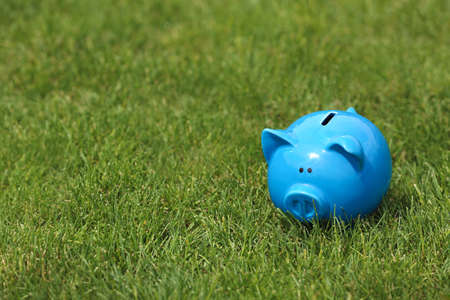Cute piggy bank on green grass outdoors. Space for text