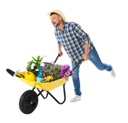 Male gardener with wheelbarrow and plants on white background