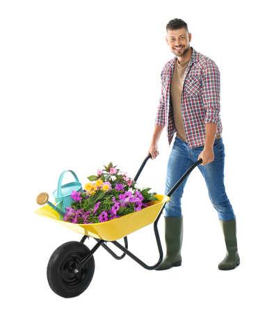 Male gardener with wheelbarrow and plants on white background Archivio Fotografico