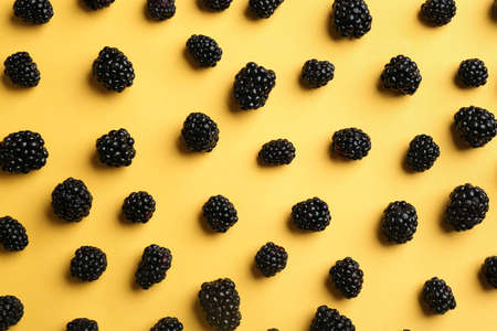Flat lay composition with fresh blackberries on yellow background 스톡 콘텐츠