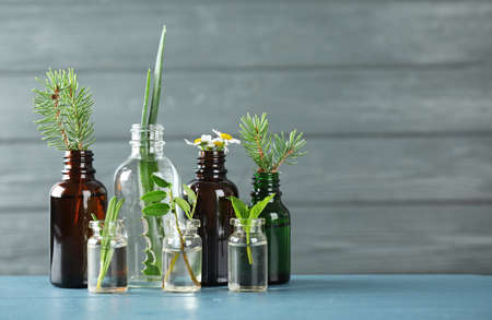 Glass bottles of different essential oils with plants on table. Space for text