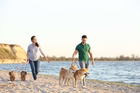 Young couple walking their adorable dogs near river
