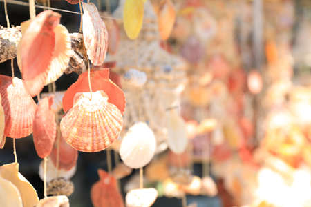 Wind chimes made of sea shells in souvenir shop, closeup. Space for text