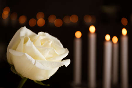 White rose and blurred burning candles on background, space for text. Funeral symbol 写真素材