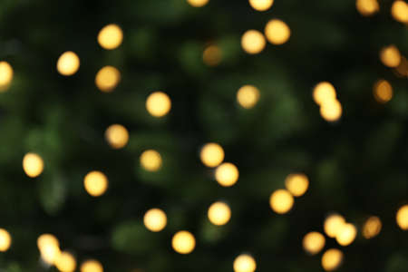 Abstract background with blurred yellow Christmas lights, bokeh effect