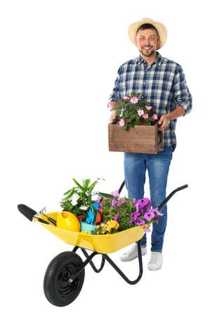 Giardiniere maschio con carriola e piante su sfondo bianco