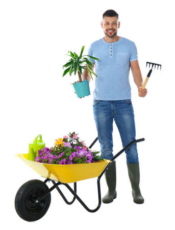 Male gardener with wheelbarrow and plants on white background Stok Fotoğraf