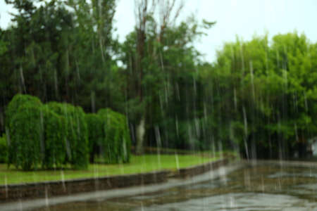 Blurred view of heavy pouring rain in green park