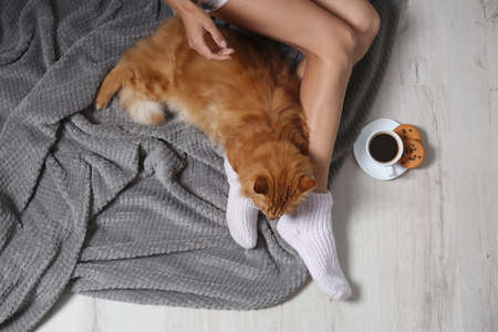 Woman with cute red cat and coffee on floor, top view