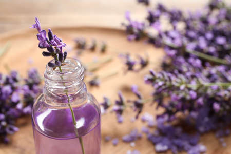 Glass bottle of natural cosmetic oil and lavender flowers on blurred background, space for text Imagens