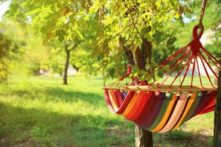 Bright comfortable hammock hanging in green garden