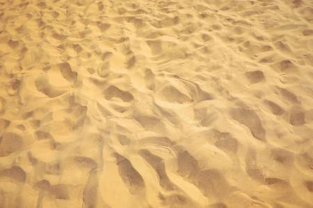 Beautiful sandy beach on sunny summer day